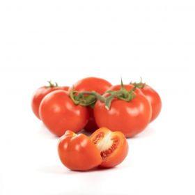 Le selezioni P&V Vine tomatoes